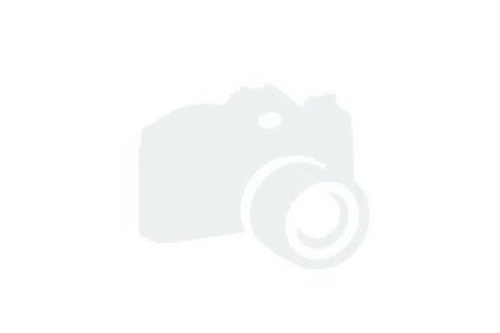 2019 Novurania Sport Tender 360